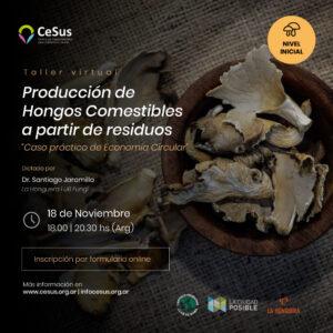 HONGOS-COMESTIBLES-1
