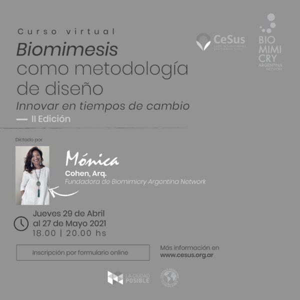 Biomimesis Flyer ok