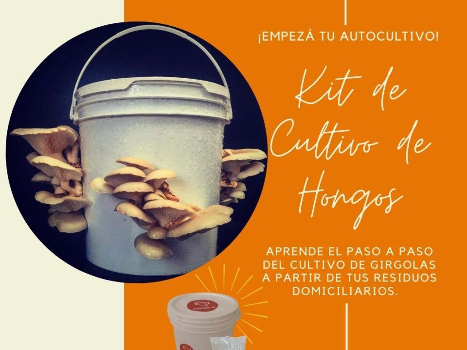 Kit de Cultivo de Hongos 2020-11-24